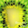 New Book: Beautiful Data