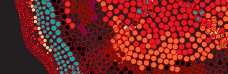 Inspiration Impuls: Complexity Graphics